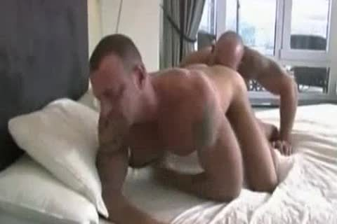 Hank Dutch At Home In bed