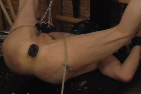 master: Sadist52   villein: MasoFun During A 4 H Session The villein Learned To Feel The Difference betwixt Whip, Flogger, Crop And Cane. that dude Ist Treated With slutty Wax, Elektroplug, Ginger, Penisplug. that dude is Suspended Upside Down, His