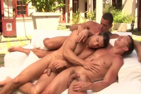 Three homosexuals Playing Outside With Their schlongs
