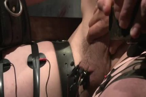 Flogged, Electrified, And pounded