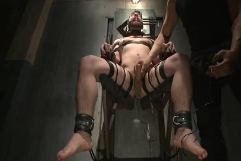 Flogged, Electrified, And nailed