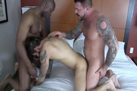 Champ Robinson, Draven Torres, Rocco Steele - Awesom three-some bare