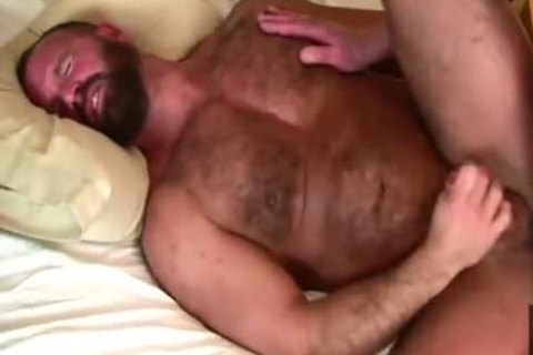 Daddy Bears poke In couch