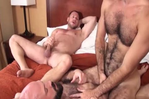 hairy Bear 3some And Creampie