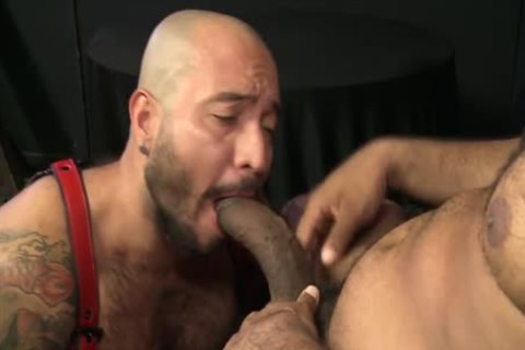 Begging For Daddys large darksome Bent penis