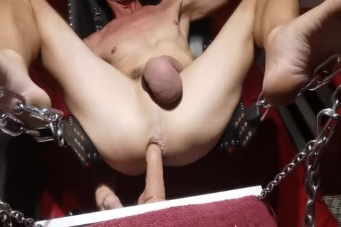 Swinging sex tool In The Sling