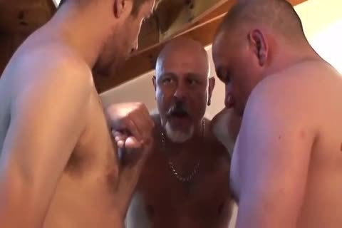 trio Of daddy And A youthful To cum On His Face