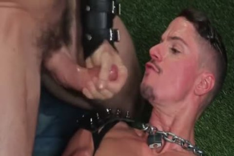 Skyy Knox And Trenton Ducati - Rs - Skuffdoghouse S02